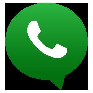 whatsapp proyecto1
